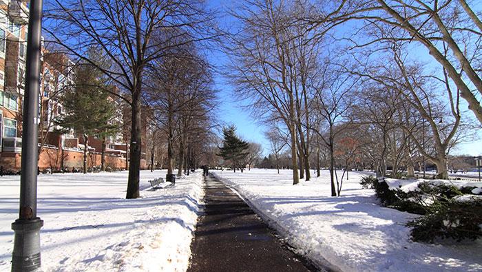 snow_for_largecarousel